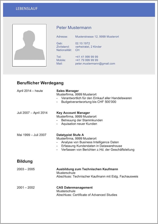 Lebenslauf-Vorlage-Schweiz